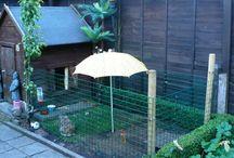 konijnen tuin