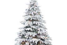 Flocked and Frosted Christmas Trees / A winter-y spin on the classic, iconic Christmas tree.  Leaves no mess and is easy to assemble/disassemble.