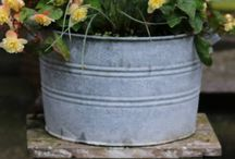 gardens: containers