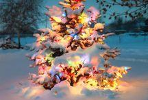 Holidays! / by Christina P.