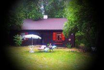 our little house in the woods