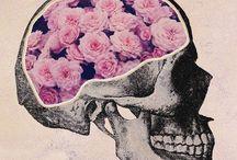 ★Skulls