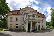 Niwnice - Pałac