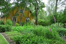 Aschanin puutarha / Garden of Aschan House