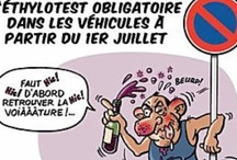 french / by c catkin