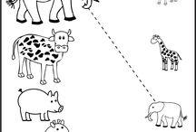 Kids Themes : Wild Animals African