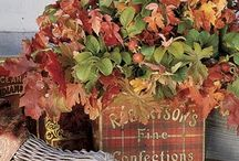 Fall / by Pam McCollister
