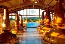 Distillen Schottlands