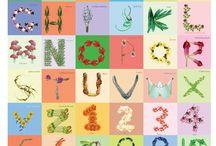 Rachael Berry Graphic Design work  / Illustration, graphic design, cd cover art