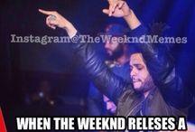 the weeknd fan