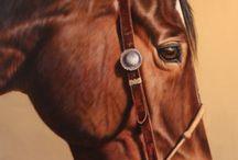 Horses Are Freedom