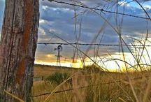 karoo landscape 5