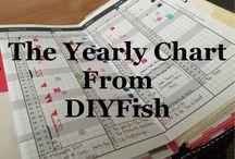 DIY FISH