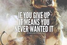 give never up.never i realy want so bad i taste it