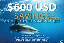 SPECIALS / Travel and dive specials brought to you by Allways Dive Expeditions!