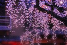 Sketchbook Japan / Themas: - Yokais - Tour for Japan - Traditional VS Modern