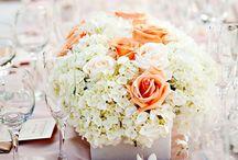 My wedding dream / Wedding beautiful stuffs