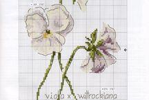 Botanique embroidery