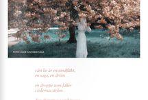 poetry beauty