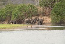 Tanzania - Places Visited / Places visited during our travels to Africa - Tanzania