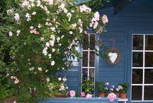 Garden / i love gardening!