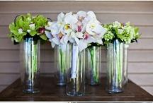 Talia's Wedding / by Lindsay Mullen