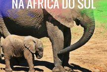 África / Dicas e roteiros de viagem na África.