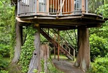 Tree house and Porch