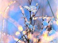 красивые картинки,фото/ Beautiful pictures , photos