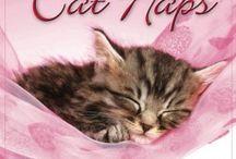 katten / Een kattenpagina vol met informatie over: kattenmanden, voer, verzorging, kattenspeeltjes en kalenders http://info7388.wix.com/kattenpagina