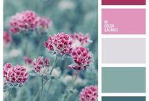Palheta de Cores / Imagens separadas com a finalidade de estudo das cores e sua harmonia.