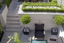 Backyard and rooftop garden