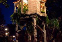 treehouse??? / by Toni Kibler