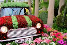 Things to do in Chelsea & Kensington near our Seviced Apartments / Come and stay at our Serviced Apartments in Chelsea and enjoy the area.