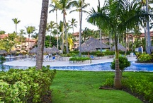 I want to go back to this resort