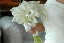 Simple white bouqet / Looking for a white bouquet for you?