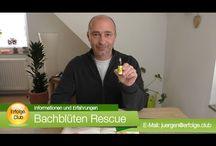 Bachblüten / Bachblüten Anwendung, Wirkung, Dosierung, Erfahrungen, Erfahrungsberichte