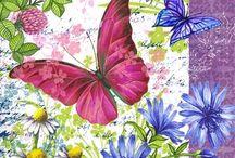 Αριστεα,λουλουδιαΛουλούδι