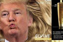Donald hairsalon