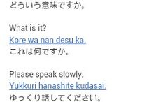 japanese lessons for my idiocy