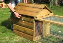 Broody Coops / Small and perfectly formed house and run, ideal as a Broody Coop or a hen to sit in peace and quiet and raise her brood, or as an isolation unit for the occasional invalid