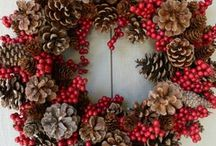 Festive gardens / Christmas goes outdoors!