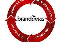 Brandamos SEO Company
