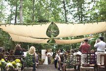 Canopy's