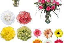 Mother's Day Ideas / Your Mom deserves the Best, so give her the Best with Fresh Cut Flowers from FiftyFlowers.com