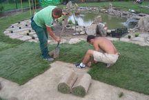 TRAWNIKI Z ROLKI / Zakładamy trawniki z rolki. Dobrze wykonany i pielęgnowany trawnik z rolki jest prawdziwą ozdobą ogrodu, stanowi tło dla roślin, małej architektury w ogrodzie. Trawniki z rolki układamy zawsze na siatce przeciw kretom, odpowiednio przygotowane podłoże to gwarancja sukcesu pięknego trawnika z rolki.