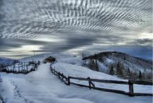winter / winter snow