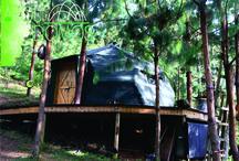domo refugio Medellin Colombia en madera / diseño y produccion domo f2 en Madera