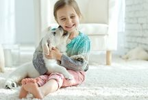 CLV Group - Pet Friendly Apartments / Everything you need to know about the apartment pet lifestyle.