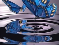 butterflies / by Vicki Lyons Ponce